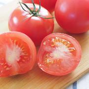 すぐに試したくなる「おいしいトマトの見つけ方」って?今さら聞けない「トマト」の基本のき