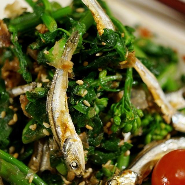 ■5分で出来る簡単常備菜【菜園掻き菜と食べる小魚のおかか和え】です♪
