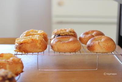 今日もパン焼き♬いろいろベーグル。