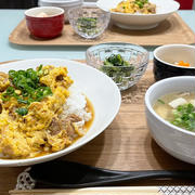 【献立】4人家族の晩ごはん/焦がし醤油の親子丼