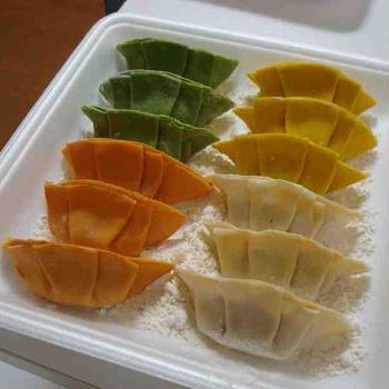 カラフル餃子(Colourful Grilled Gyoza / Dumplings)