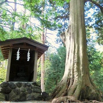 北口本宮冨士浅間神社の大塚丘は絶対行くべきパワースポット!
