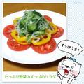 たっぷり野菜のすっぱめサラダ by のびこさん
