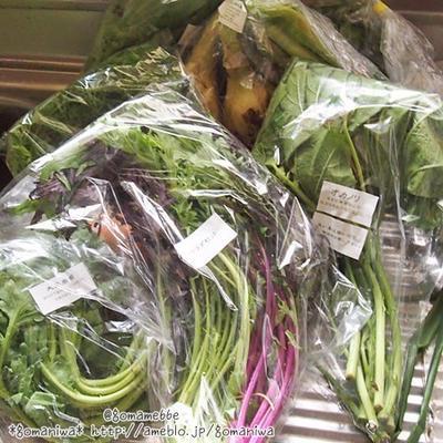 ★さいのね畑のお野菜 de 人参と人参の葉のチヂミ 作ってみましたぁ♪
