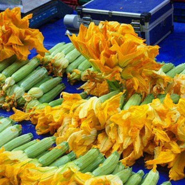 花ズッキーニのサフラン海老ピラフ詰め&新ニンニクアイオリ/花ズッキーニのマヌリチーズ詰めフリット