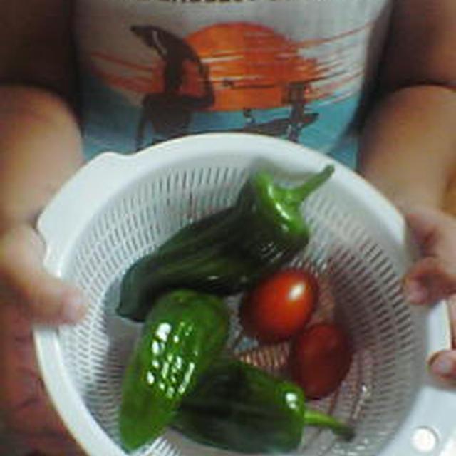 菜園の野菜と・・・頂き物の野菜と・・・・・『ピザ★ポテト』(キッチン ラボ)