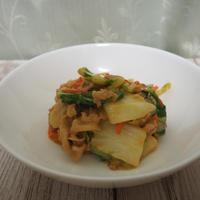 李錦記オイスターソースを使って白菜のオイスターマヨ炒め