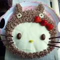 *トトロをかぶったキティちゃんのケーキ*