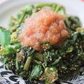 オクラと空芯菜のおろし玉ねぎポン酢