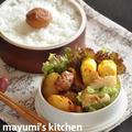 【節約弁当】 ピリ辛味で食欲増進★ごはんがすすむ鶏肉とじゃがいものピリ辛炒め弁当