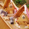 ヘクセンハウス2019年(令和元年)☆クリスマスのお菓子の家、完成!