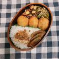 コロッケ弁当(ピーマンゆかり和え、ひじきの梅煮、ごぼうのバルサミコ酢炒め)
