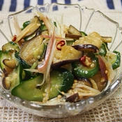 生姜でさっぱり夏野菜のピリ辛浅漬け
