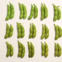 枝豆の調理時間と味の変化