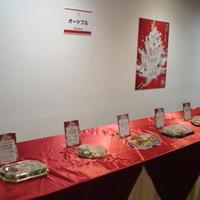 【イケセイ】クリスマスケーキお披露目試食会に参加しました②