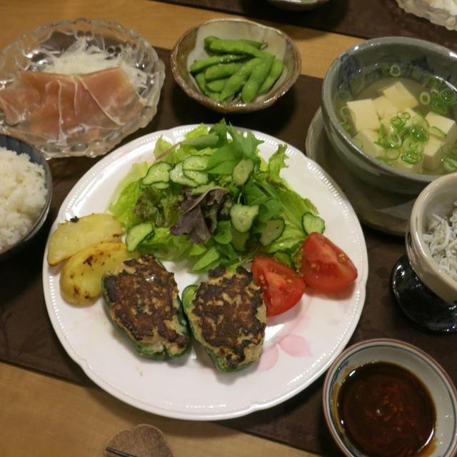 肉厚ピーマンの肉詰めの晩ご飯 と 3色木槿の花♪