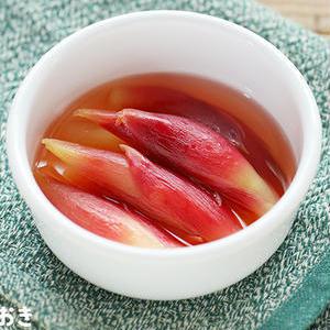 箸休めにどうぞ♪「みょうがの甘酢漬け」おすすめレシピ
