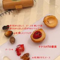 スパイスセミナー in 大阪  9月30日はクミンの日
