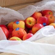 今年もたくさん届きました♪ジャズりんご