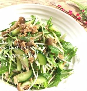 水菜ときゅうりのツナポン酢サラダ♡