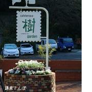 【食べ歩き】樹ガーデン 鎌倉