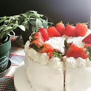 リクエストはノンオイルシフォン生地で苺のショートケーキ~♪♪
