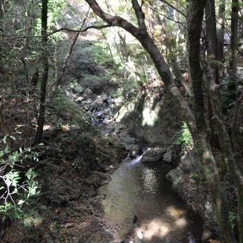 箕面の滝辺りを散策