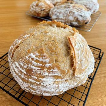 カンパーニュ&角食パン修行。