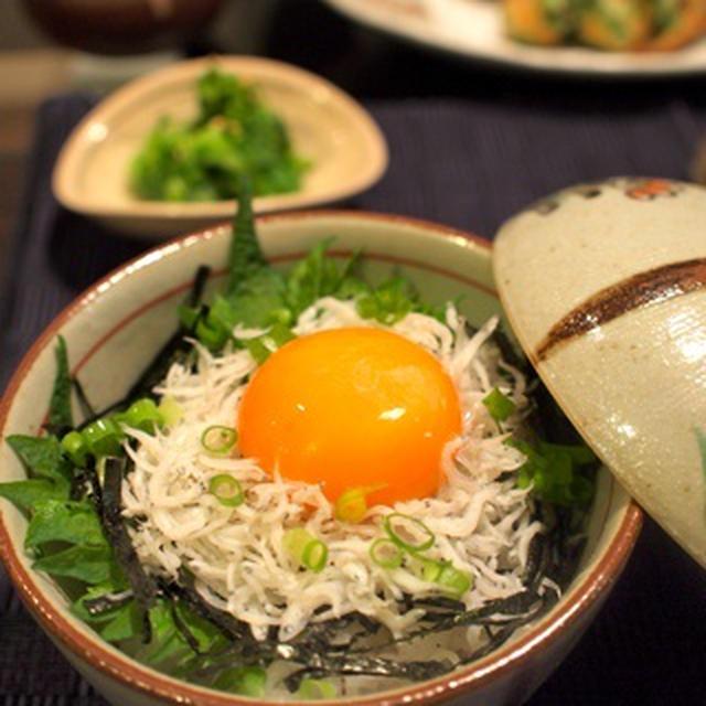 浜名湖旅行2日目&しらす卵かけ丼