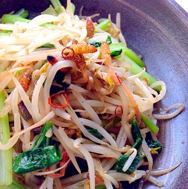 つくしともやし&小松菜のアンチョビガーリック炒め
