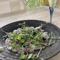 おもてなし料理の前菜にうまみが濃厚鯛の昆布締めカルパッチョ