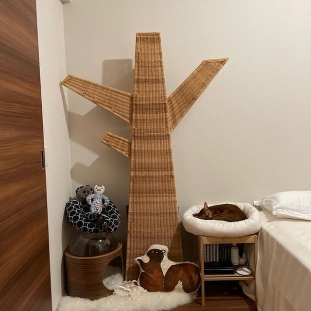 寝室、ねこ部屋化