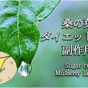 イラストで分かる糖質カット『桑の葉』のダイエット効果と副作用
