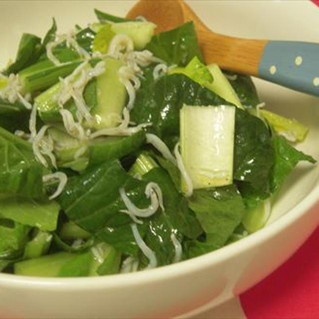 生でそのまま小松菜としらすのサラダ