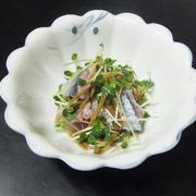 秋刀魚の刺身と貝割れ菜の生姜和え
