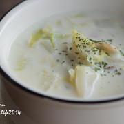 白菜と長ネギの濃厚豆乳スープ
