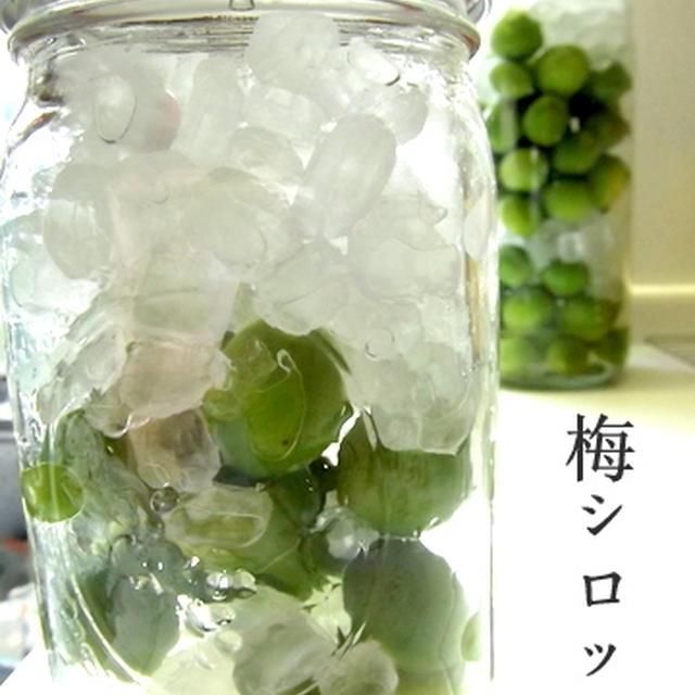 ≪今が旬☆梅シロップ作り≫