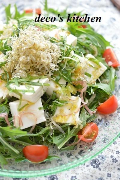 薬味たっぷりで!カリカリじゃこと豆腐のサラダ、柚子胡椒風味 + つばめのヒナとお母さん