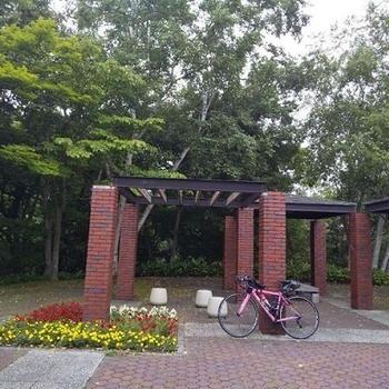 札幌~旭川~札幌(ロードバイク292km!)