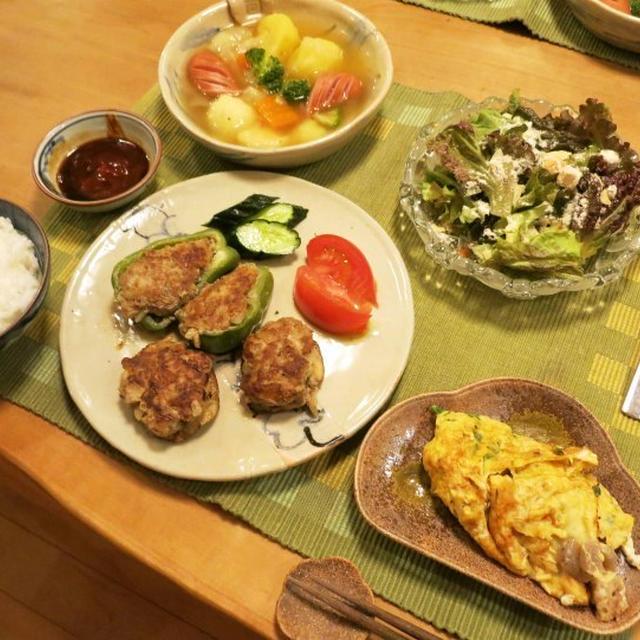 自家製しいたけ&ピーマンで肉詰の晩ご飯 と シオンの花♪