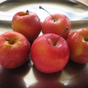 姫リンゴ煮♪