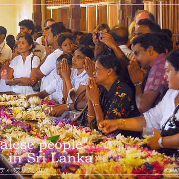 スパイス大使のスパイス旅行へ。次の旅はスリランカです(経由地KLより)