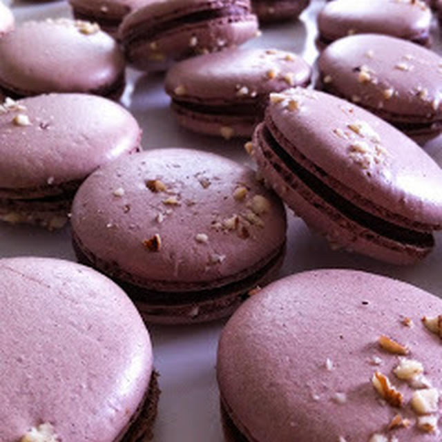 Macaron chocolat - Praline noisette ヘーゼルナッツプラリネ&チョコ マカロン