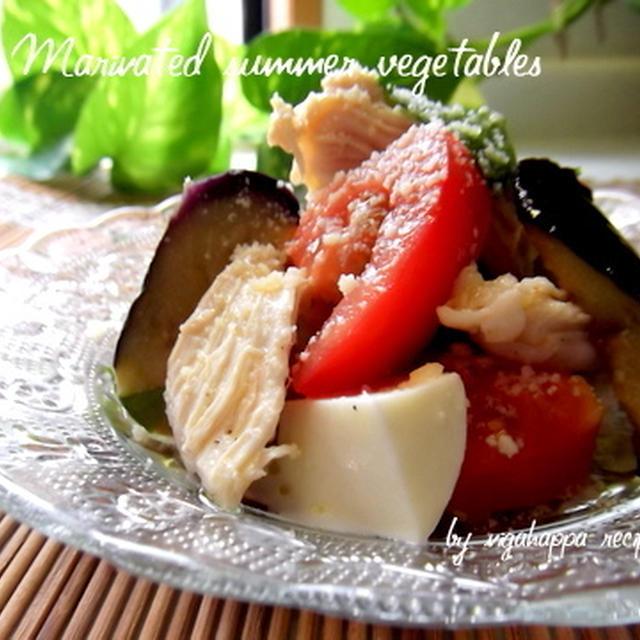 <夏野菜とモッツアレラのマリネサラダ>