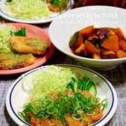 たっぷりねぎ&しょうゆでいただくとんかつ&豆腐のフライ/スマホに話しかけるw/お弁当の記事にたくさんコメントをありがとうございました