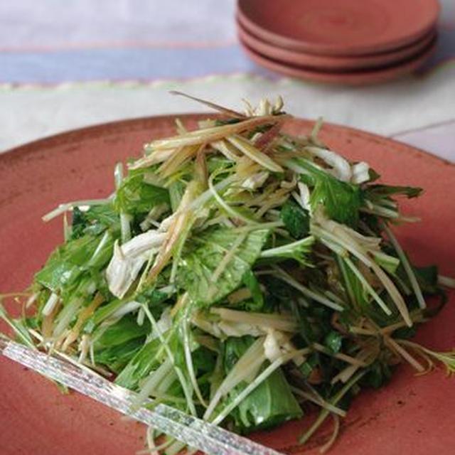 肉食女子の肉Recipe『蒸し鶏と香味野菜のサラダ』