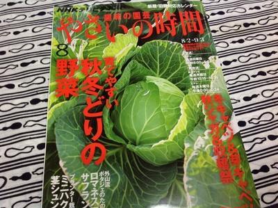 NHKテレビテキスト『趣味の園芸 やさいの時間』