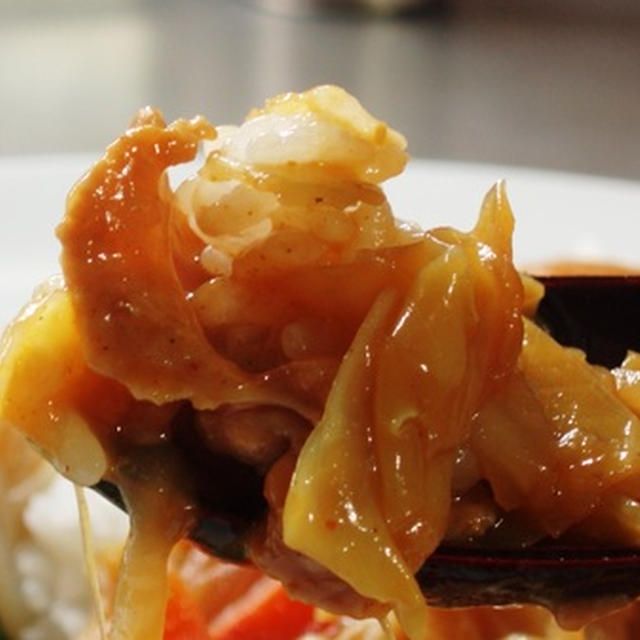 昭和風味のキャベツカレー:ハウスバーモントカレーのアレンジ:格差社会で生き残る企業とは