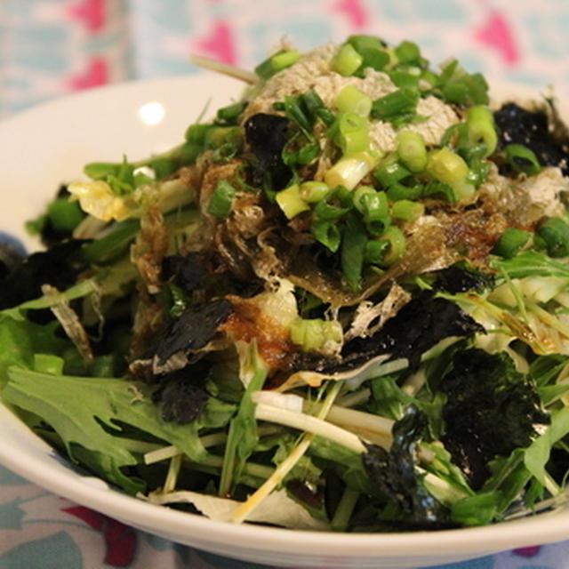 水菜とレタスの☆簡単とろろ昆布入りサラダ