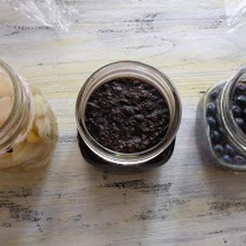 梨酵母、コーヒー酵母、ブルーベリー酵母